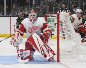 Jonathan Bernier (Photo Courtesy of Mlive)